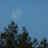 la lune, au matin du 01/06/2018 (44101/31/79.JPG)