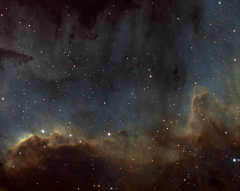 """NGC 7000 : le mur en H-SHO à 0,6""""/p"""