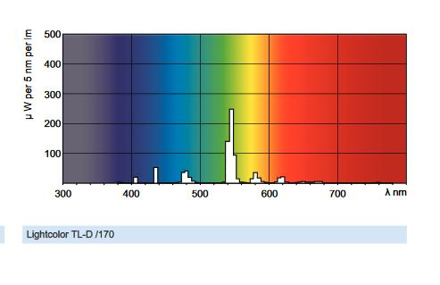 5b6332883cae8_fluovert.JPG.0074298eb75e6912999c40b4b08abc56.JPG