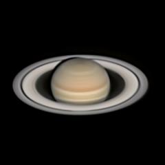 polo0258