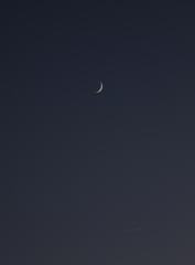 la lune et Vénus, au soir du 14/08/2018 (46925/26/42/64/75.JPG)