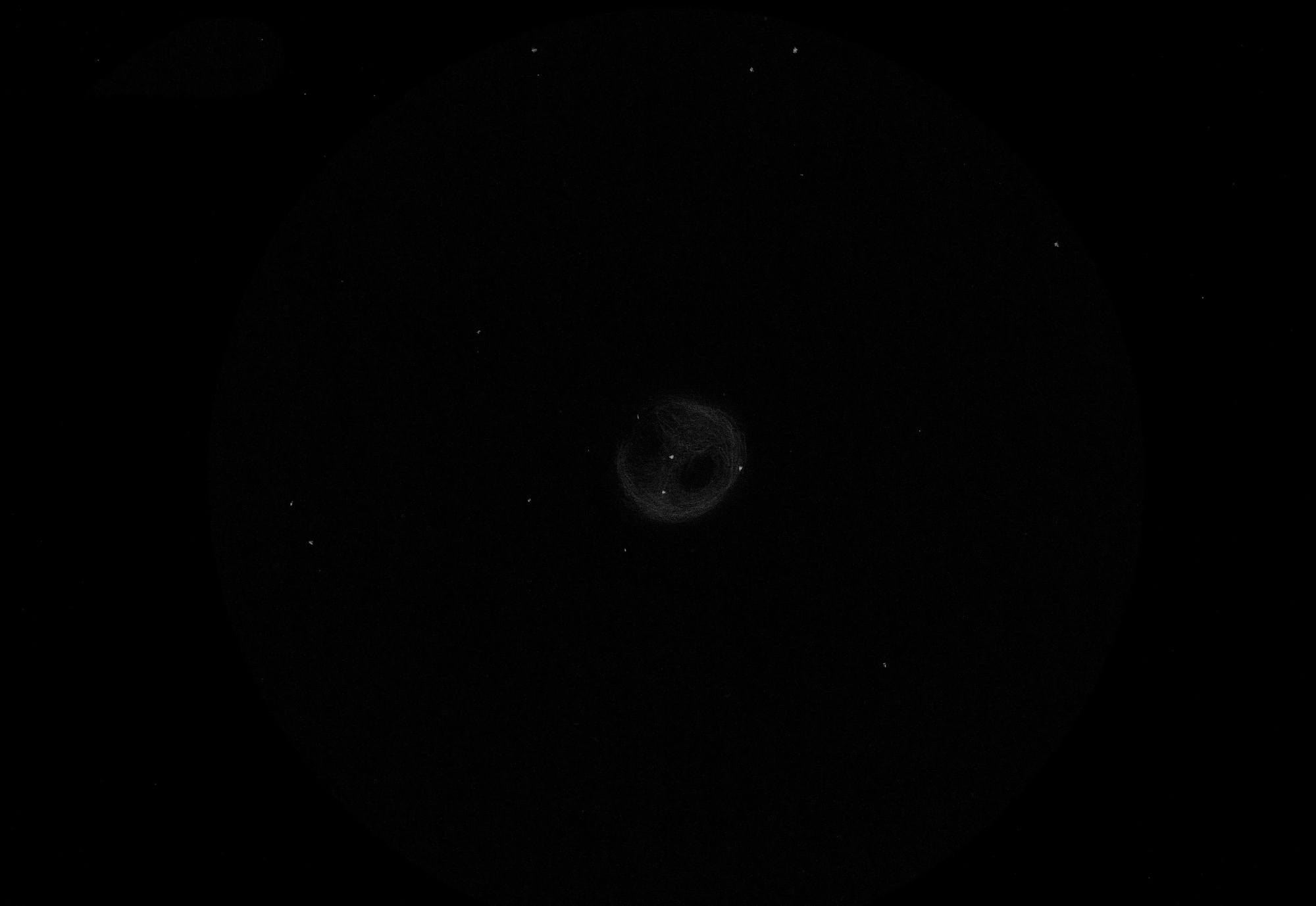 5b9e327093dfa_NGC2462.thumb.jpg.3c05539ef8e6f514f88c442e5f84a34c.jpg