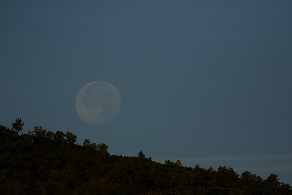 la lune, au matin du 26/10/2018 (51245)