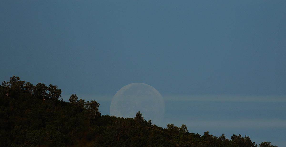 la lune, au matin du 26/10/2018 (51255)