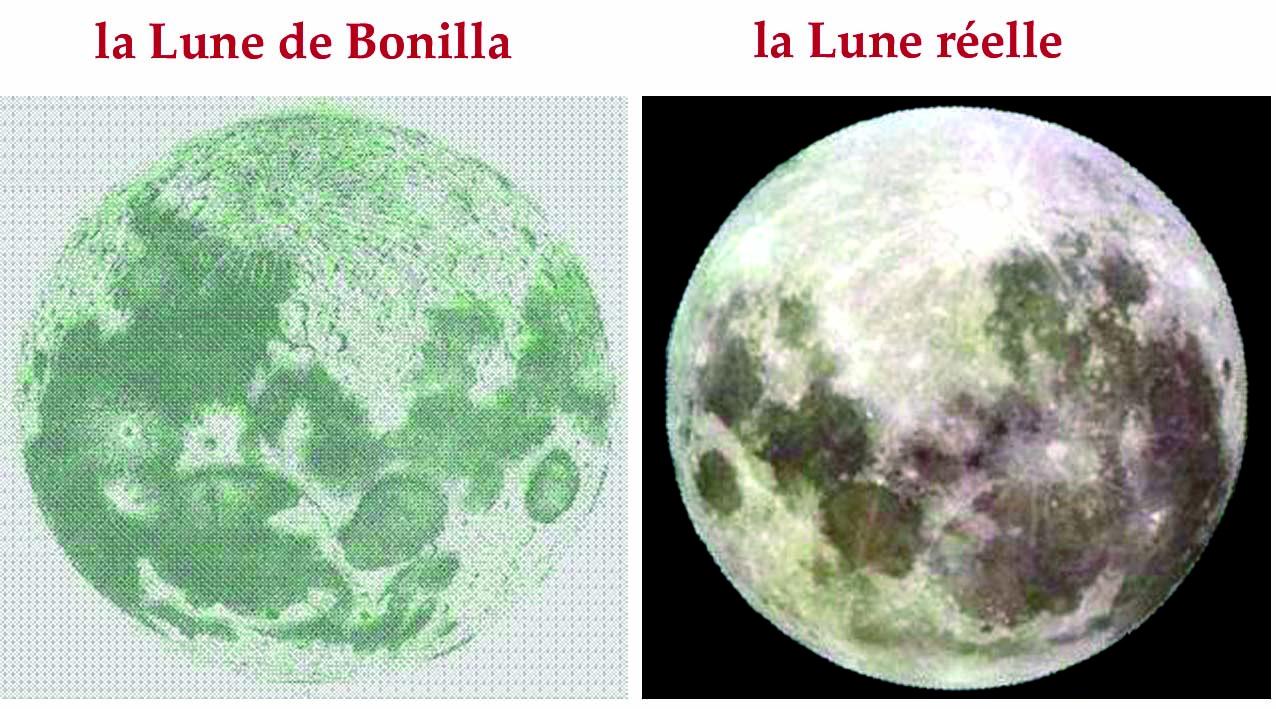 bonilla2.jpg