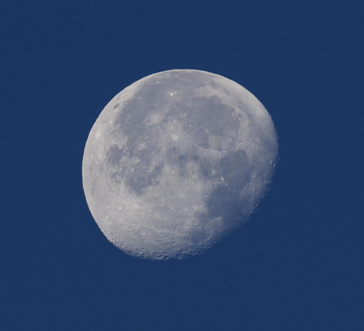 la lune, bleue, au matin du 26/11/2018 (52646)