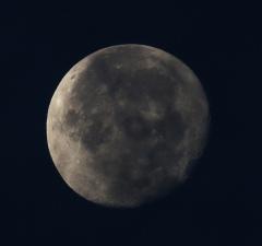 la lune, au matin du 25/11/2018 (52443/450/479)