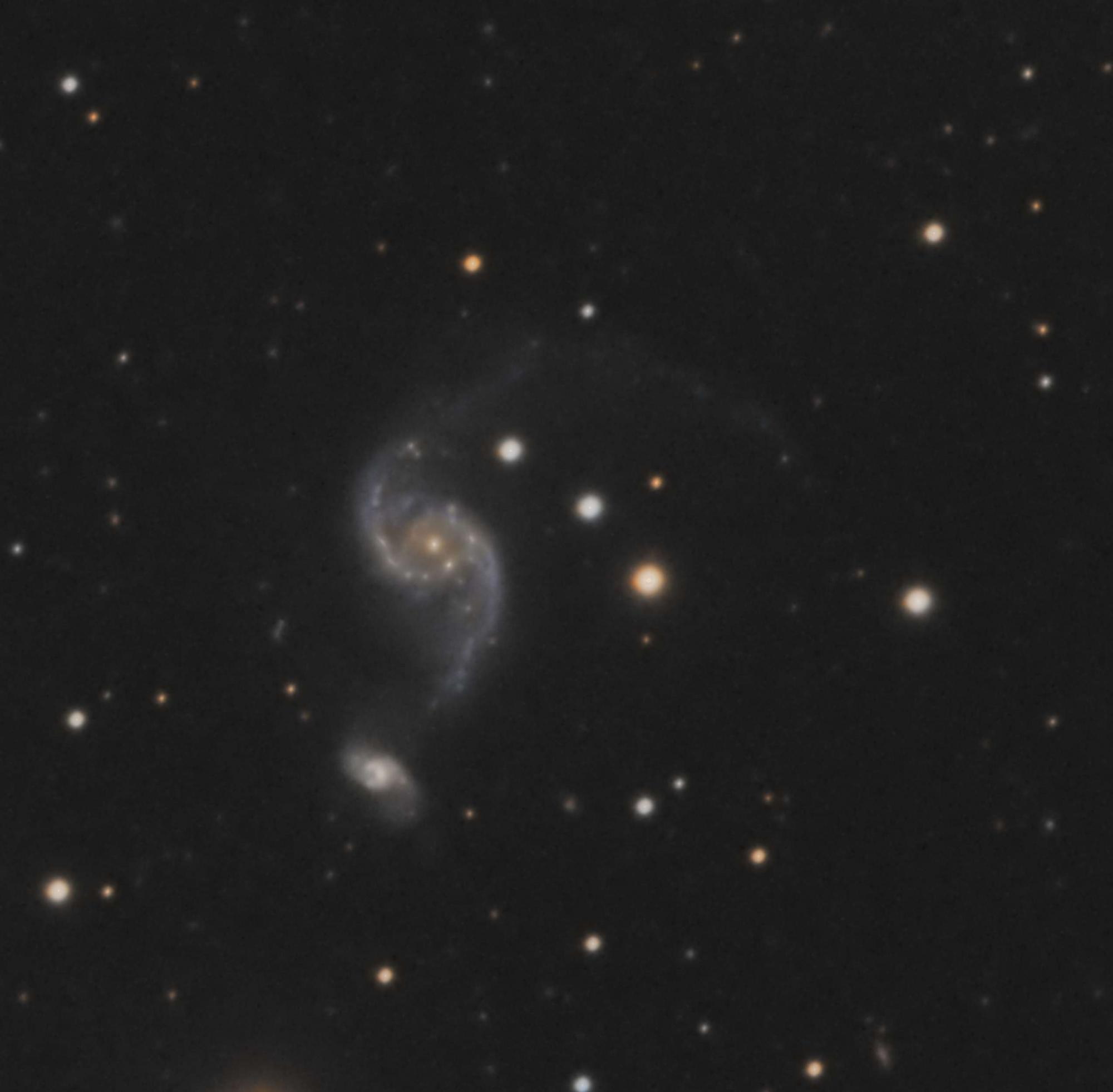 5c178f8828fce_NGC2535crope.thumb.jpg.86192818cf10da13f7e24438092bf269.jpg