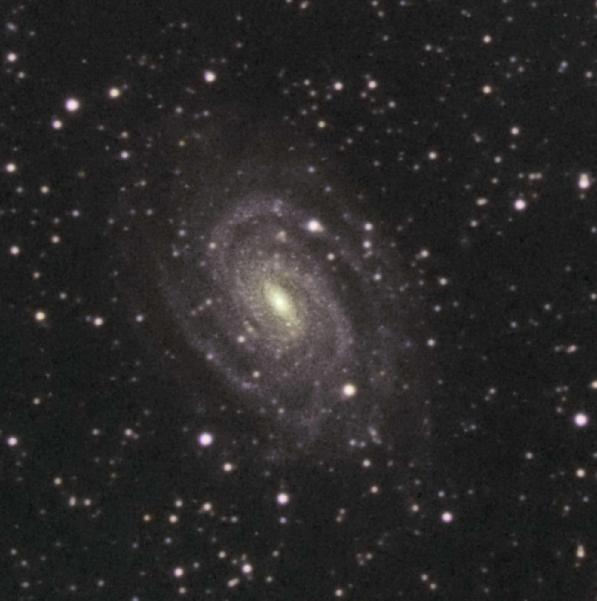 5c1cd5f2f3551_NGC6384croppe.thumb.jpg.abb2cd2ca05ec3a3398ab6a79acccea4.jpg