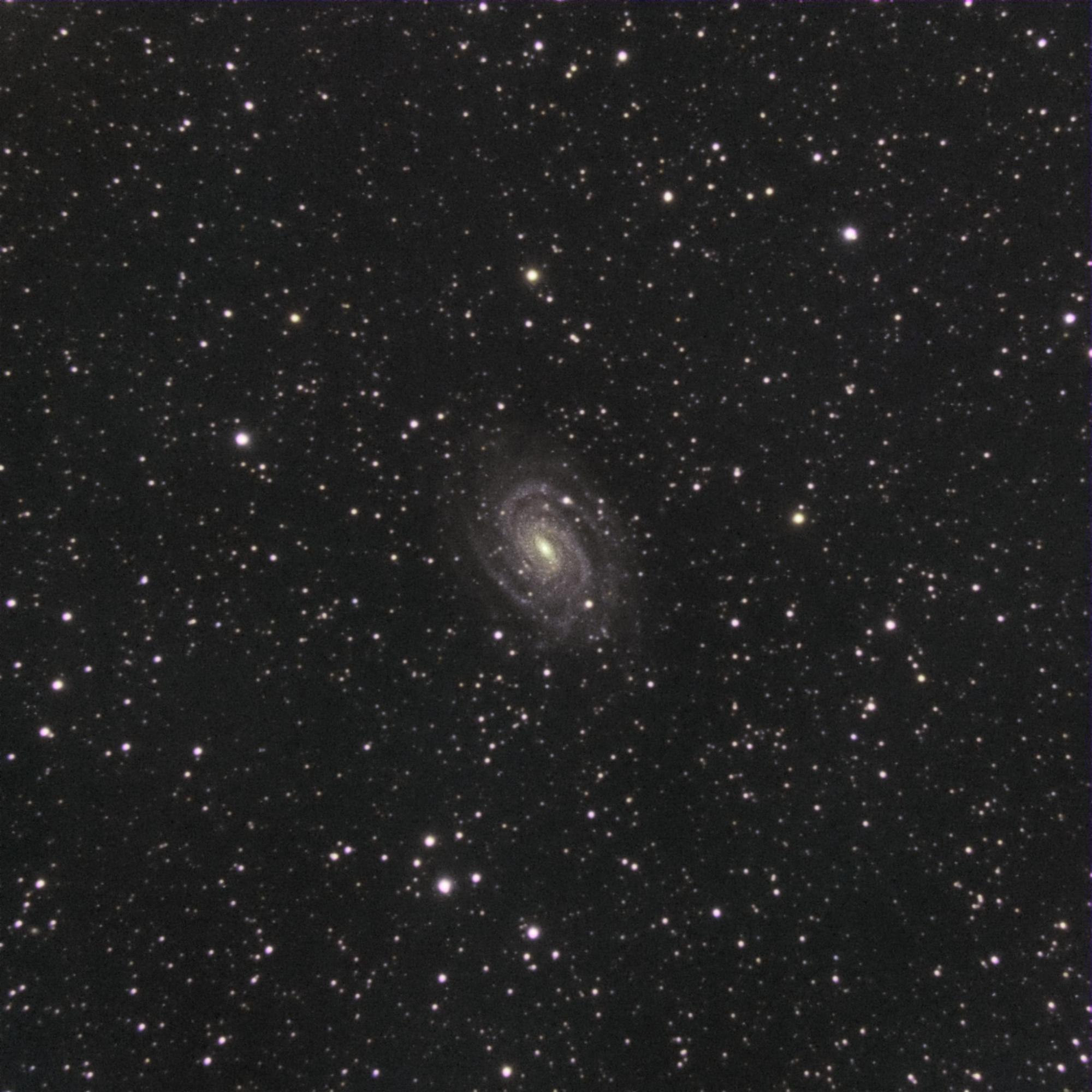 5c1cd5f40979b_NGC6384.thumb.jpg.c24a532dc87f385b56dfa10bc8e8785e.jpg