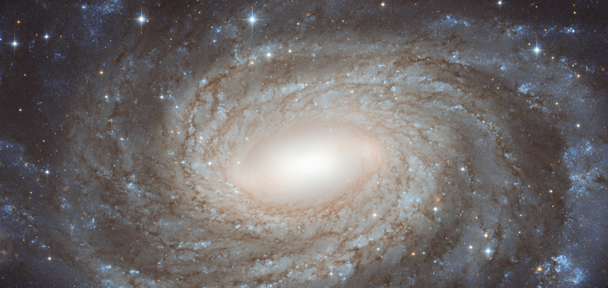 5c1cd5ffce753_HubbleNGC6384.thumb.jpg.abeca0517040b05abd49b9d6bdf31f91.jpg