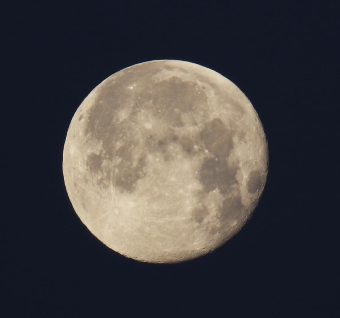 la lune, au matin du 22/01/2019 (56483/490)