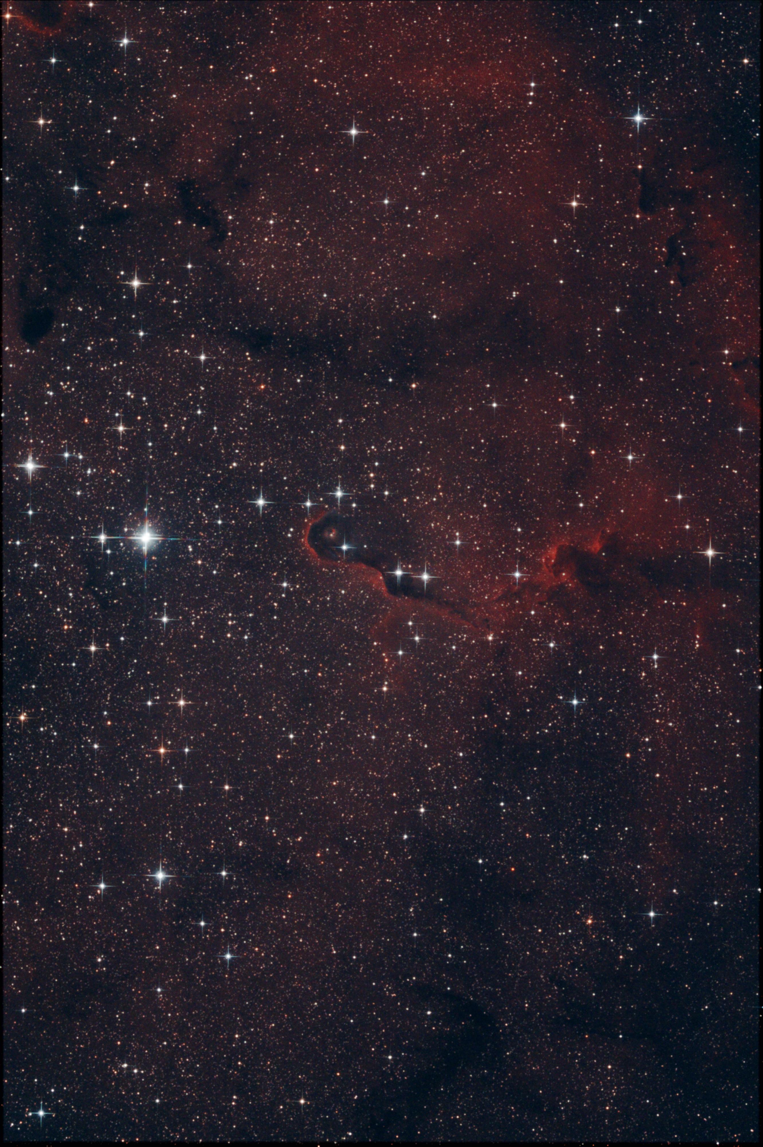 IC 1396 La Trompe d'éléphant