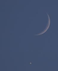 la lune, au soir du 09/01/2019 (55312.343)