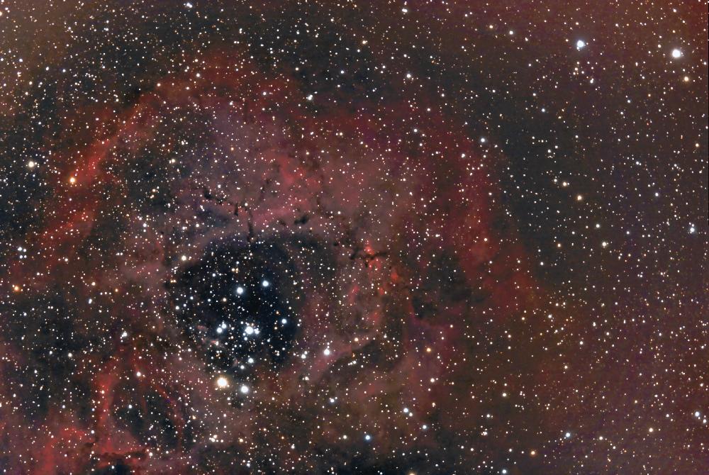 rosette nebula ngc 2238  1à26 + 30 FINAL IRIS2  CC 1000PX.jpg