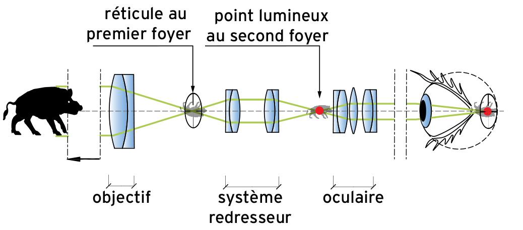 formationduneimage-F.jpg.952a0b56167c08ff4a2c3645e444f1aa.jpg