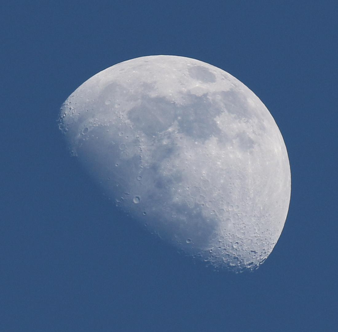la lune le soir du 14/02/2019 (58930)