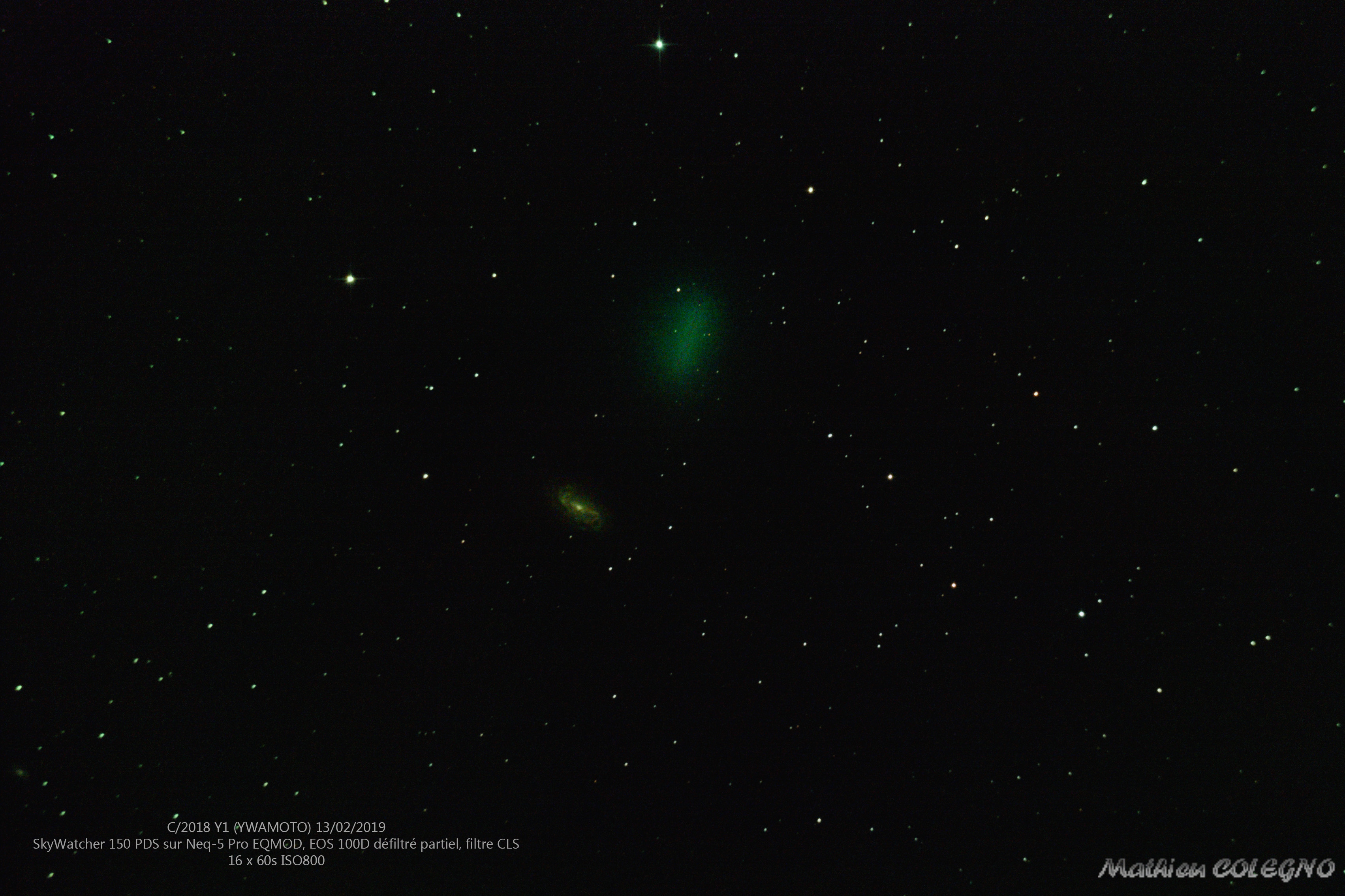 C/2018 Y1 Iwamoto et NGC2903