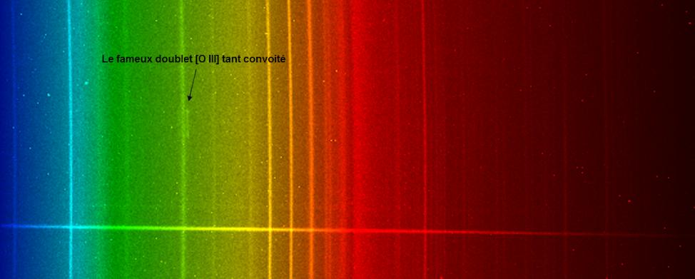 5c7c669addd3e_spectrebrutkn68.png.6241c1cabb197b6da0f57946668df973.png