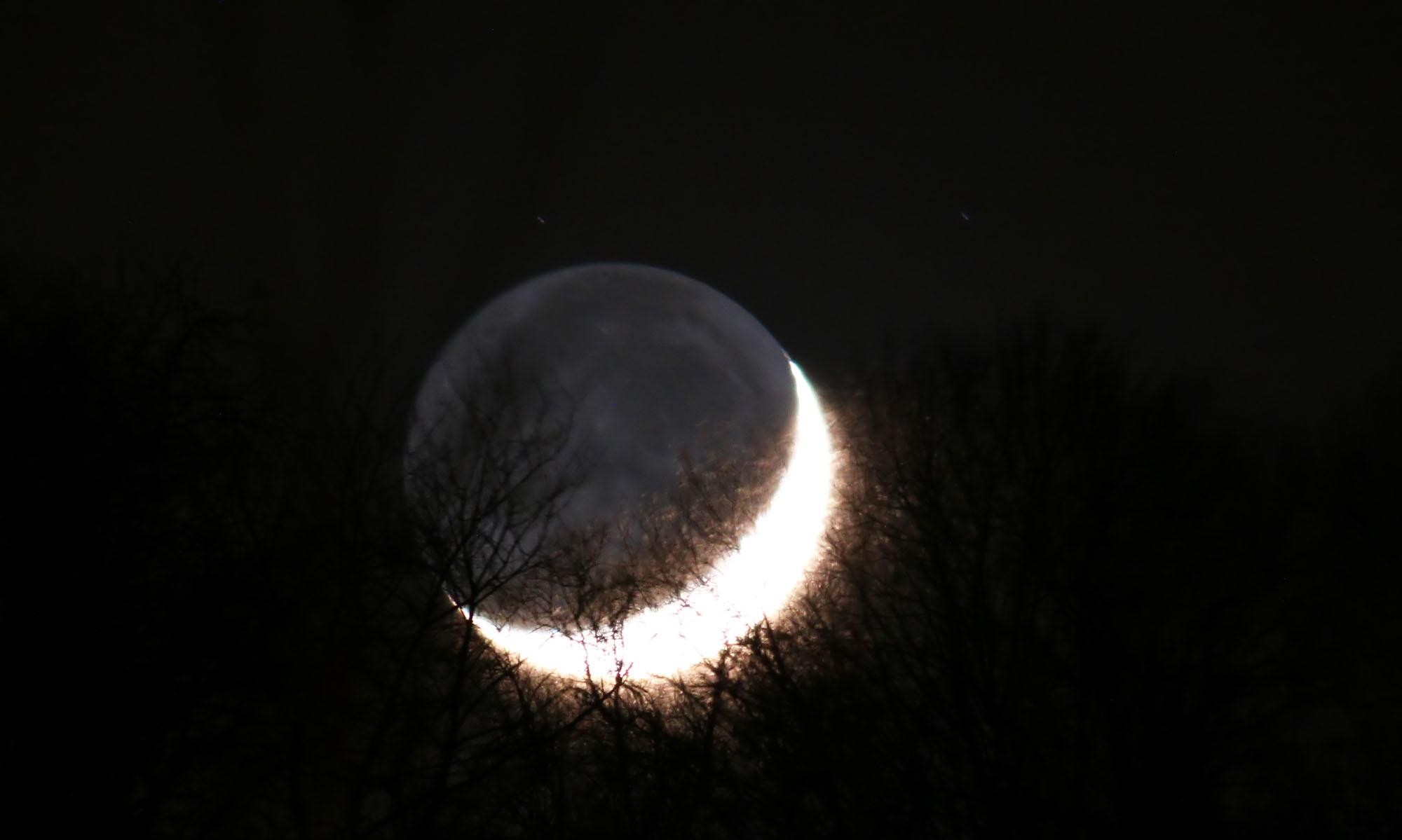 Lune cendrée 4809B3 s.jpg