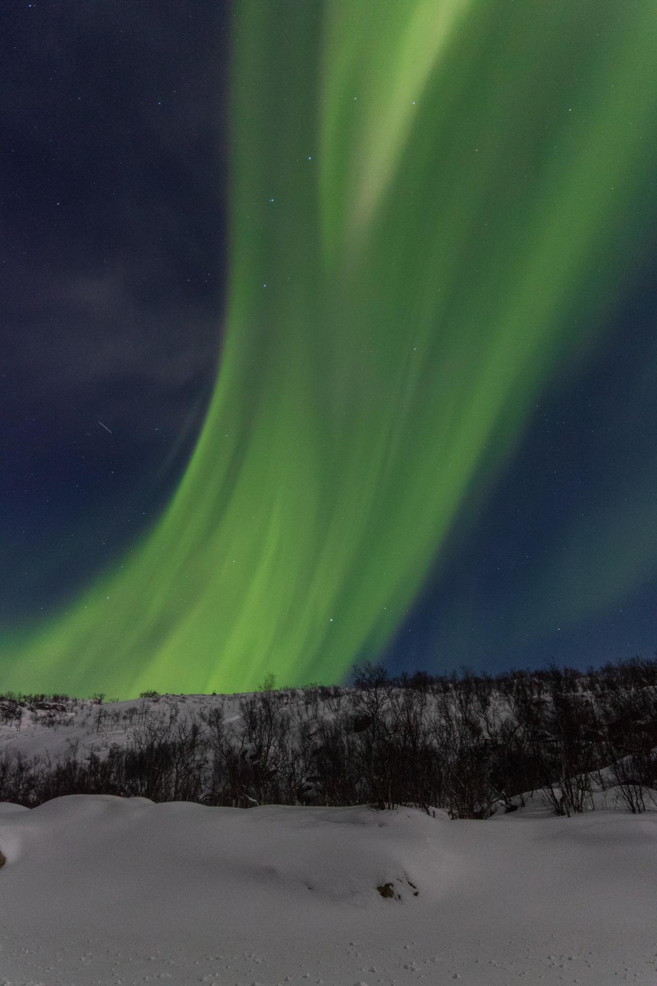 aurores-4.jpg