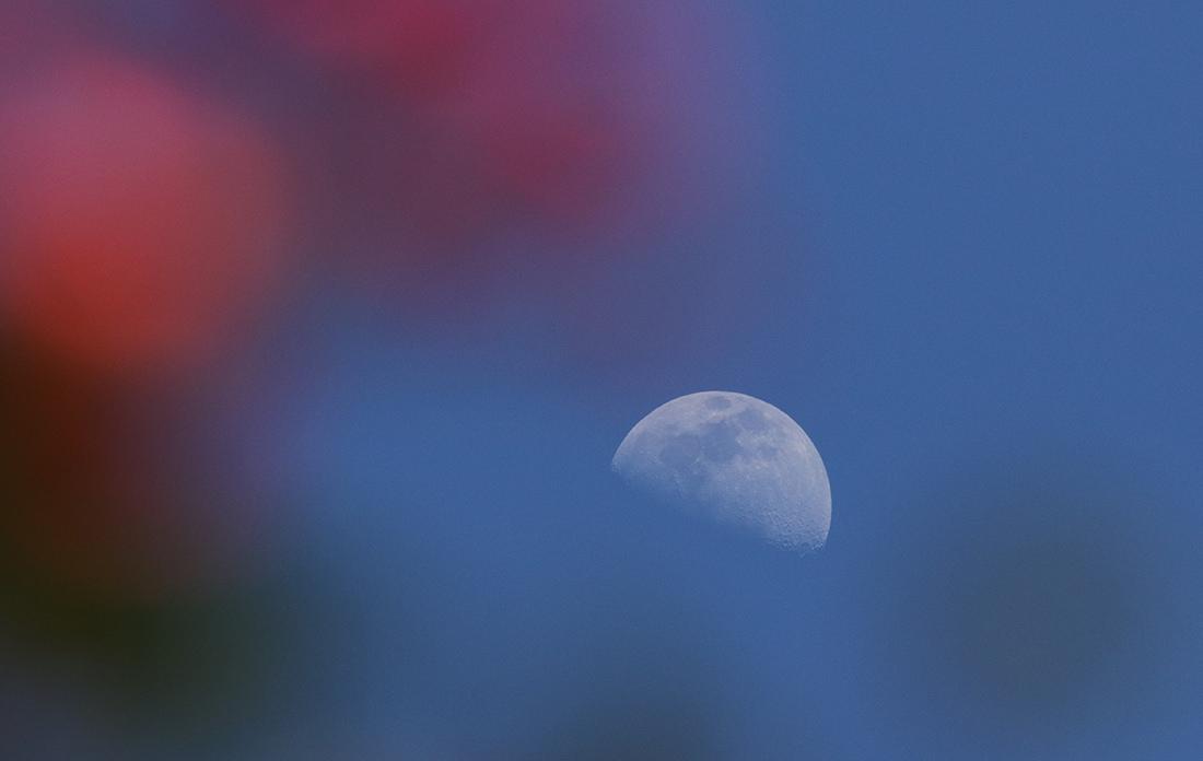 la lune le 13/04/2019 (62713/722)
