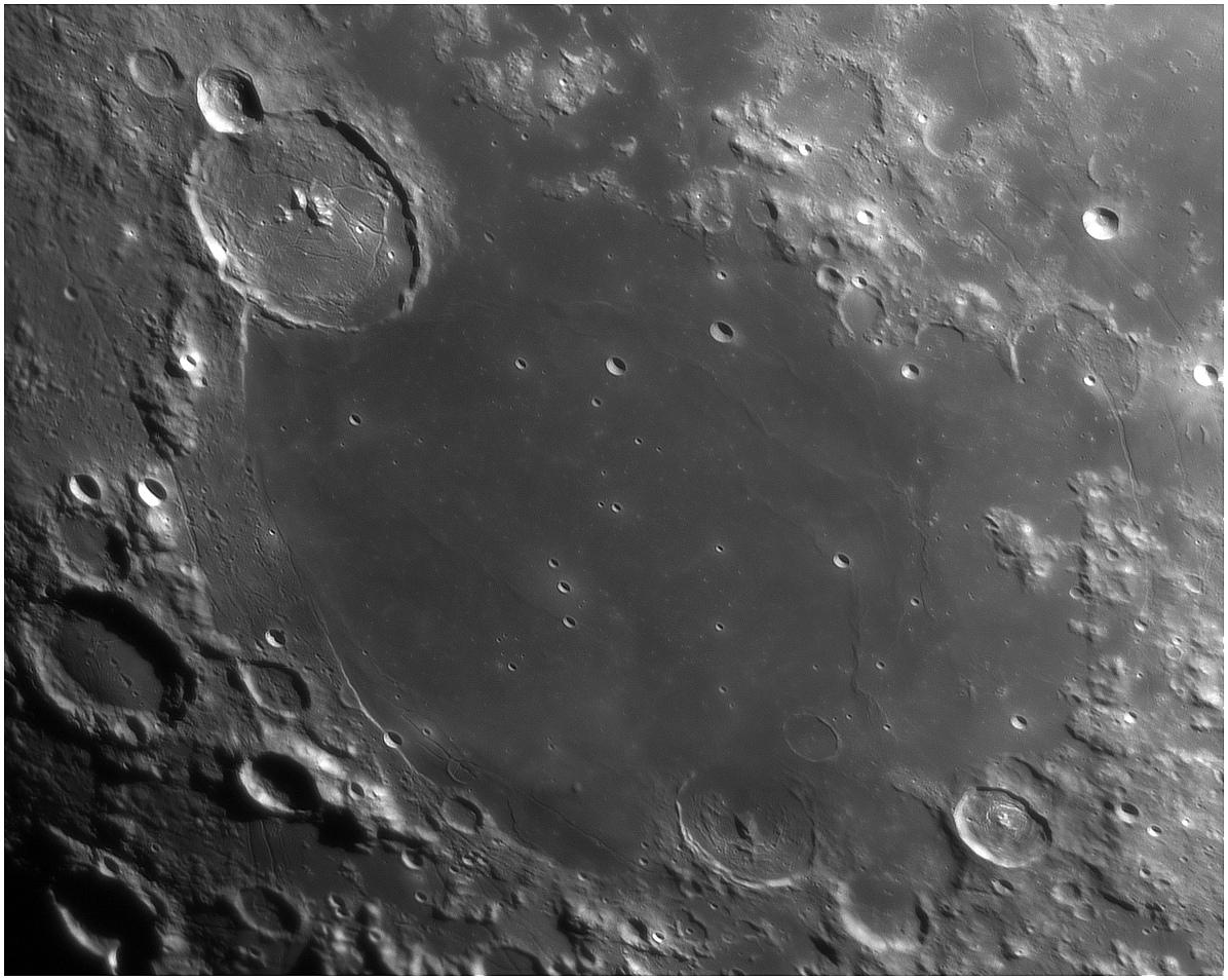 large.5cb6f135e6520_MerdesHumeurs50.jpg.