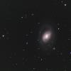 M 96 iris CC.png
