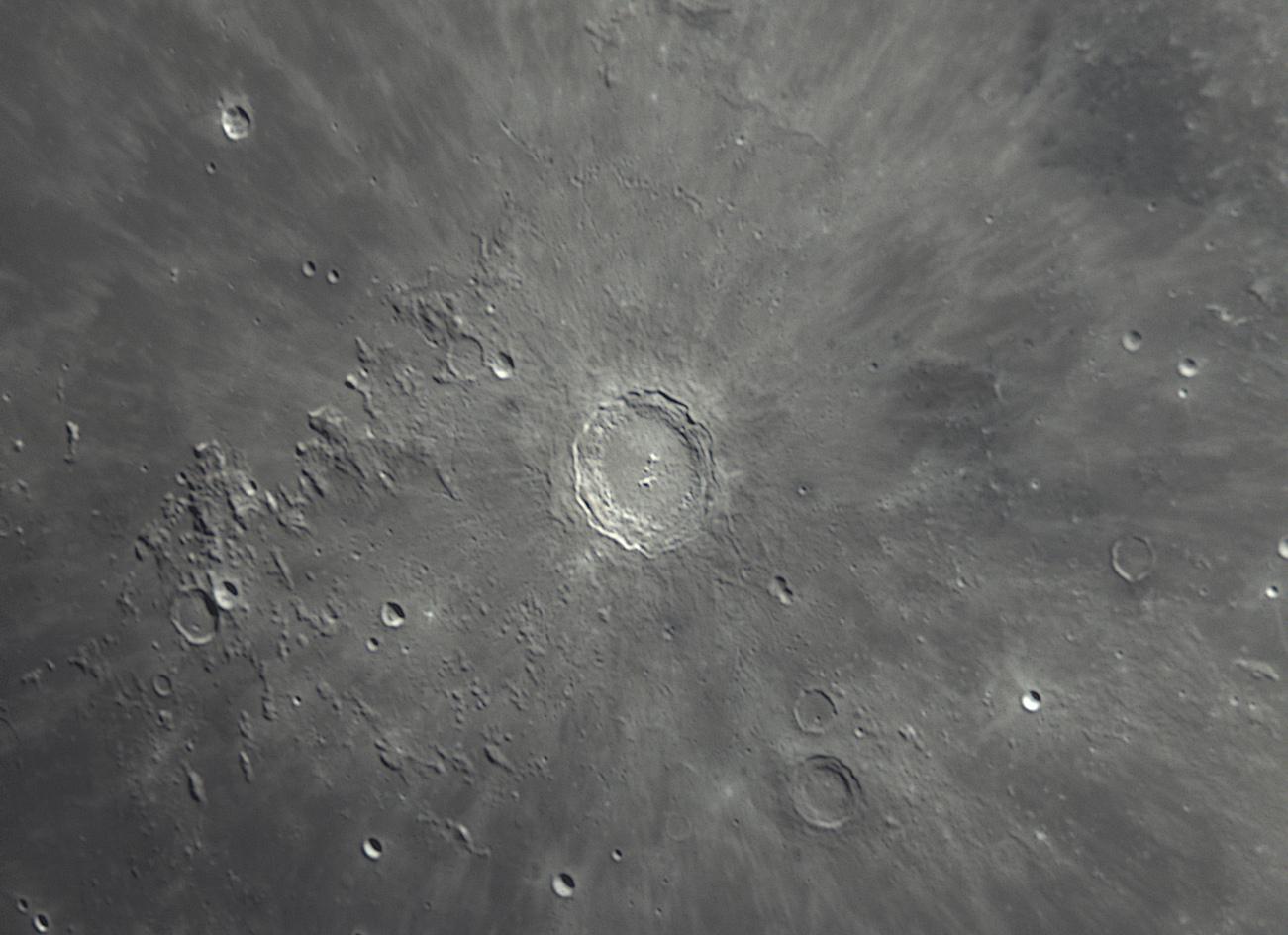 5ce01596587ba_Copernicbarlowx2.jpg.f24b6947304b02a44155cf2734f2bc5d.jpg
