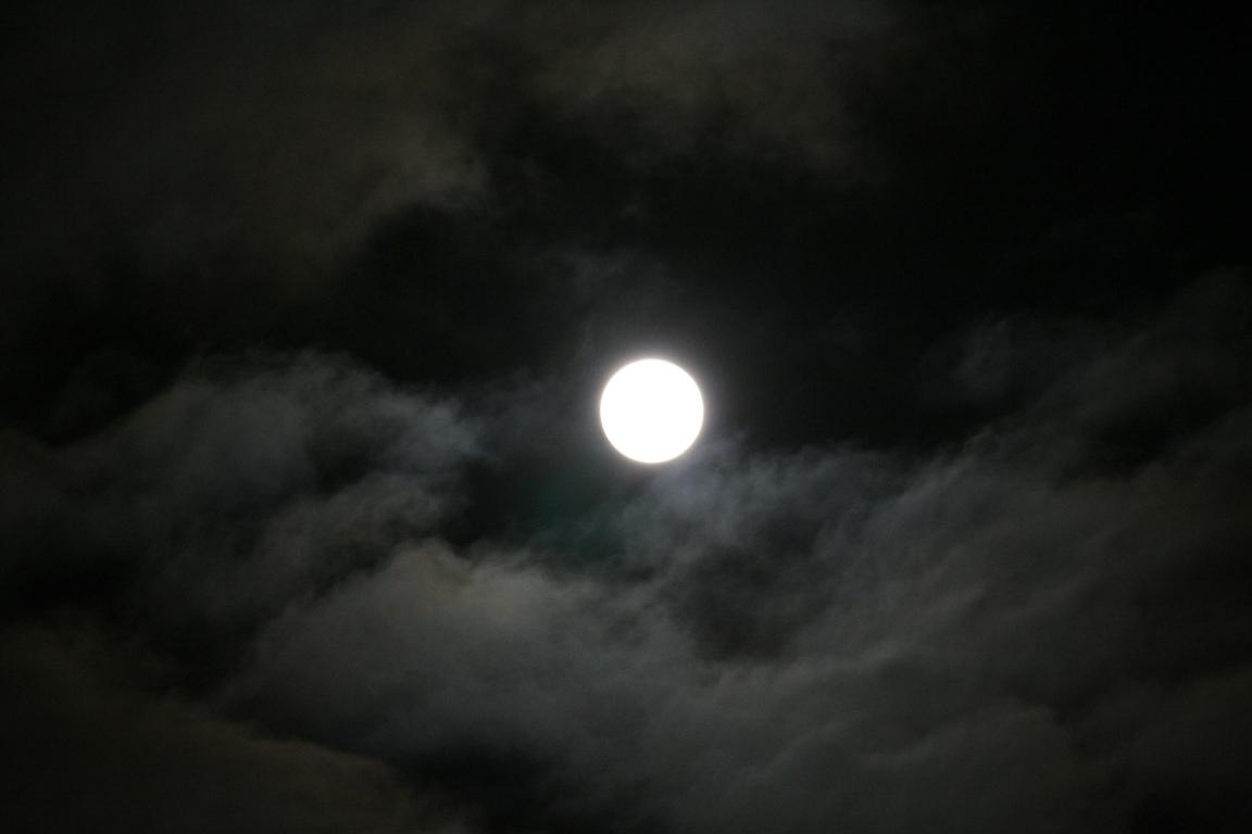 IMG_1771.jpg.10c05652a077edfc384f090e3b5720af.jpg