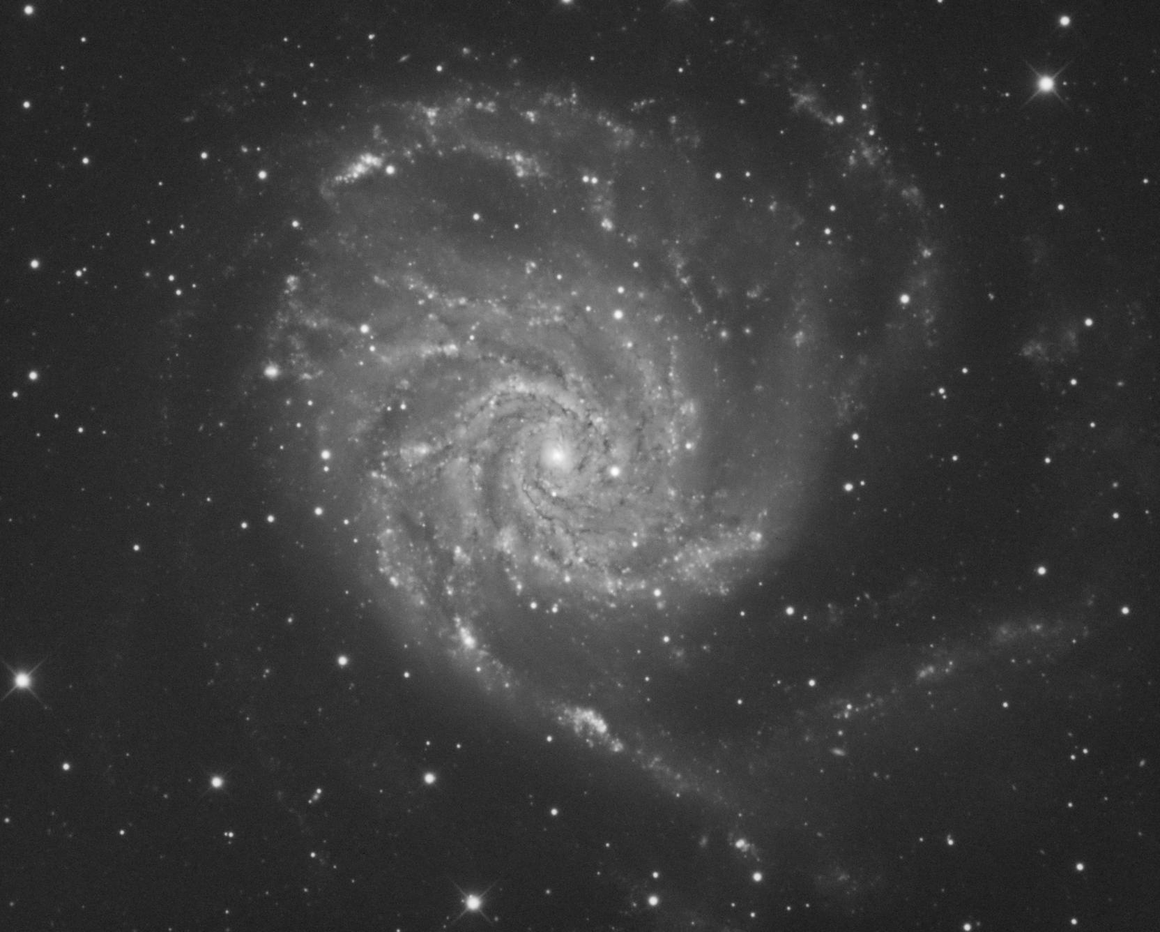 L_M101_v2.png.47543d735e1f6a3946ddab5474e44d45.png