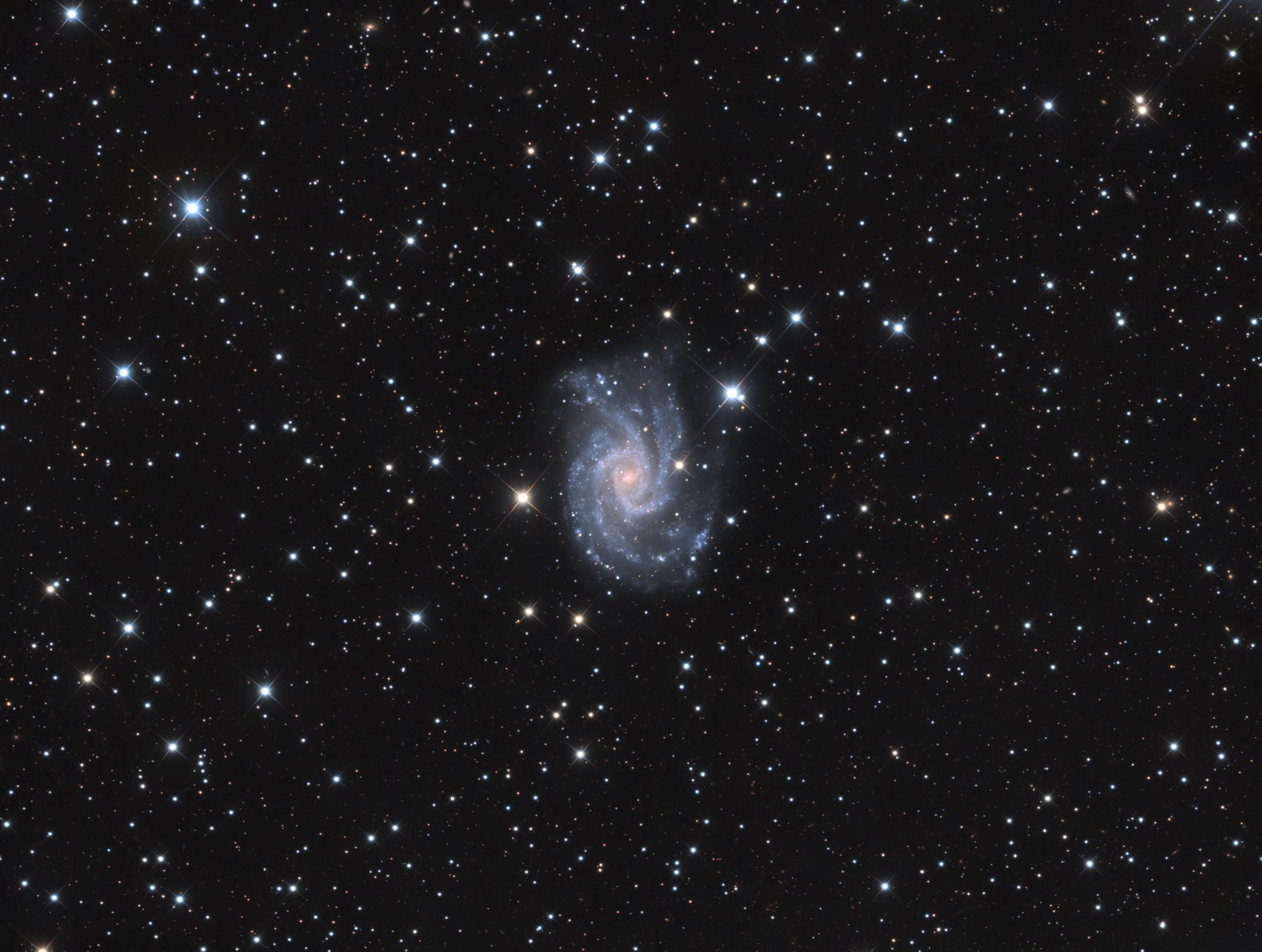 NGC2835-LRVB-V22-Publi.thumb.jpg.c960fd8e2257a2939ec1024bbf9f6ce6.jpg