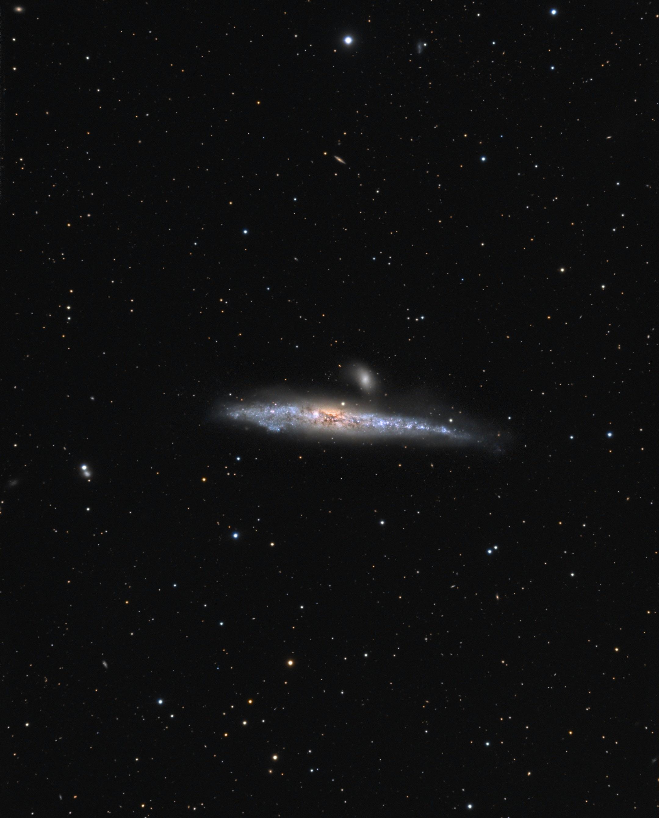 NGC4631 La baleine