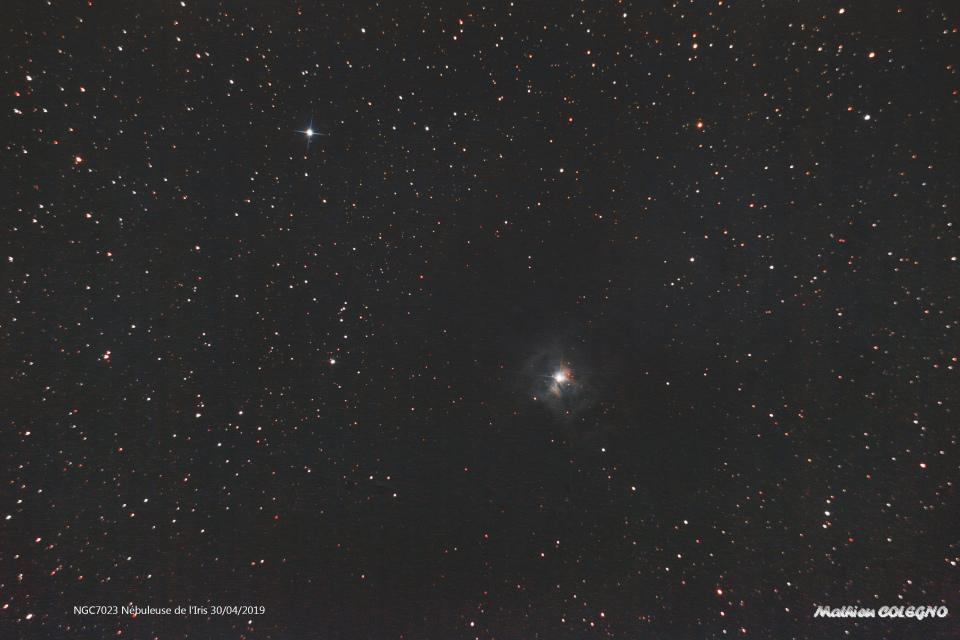 NGC7023 - Nébuleuse de l'Iris