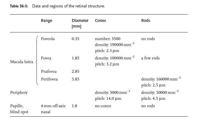 retina-structure.JPG.eeacea654f29ff9abdc0db541b063ca3.JPG