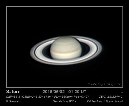 2019-06-02-0125_4-L-_DeRot_MULTI_12713_web.jpg