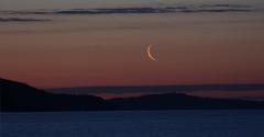 la lune et Vénus le 01/06/2019 (64894/903/904)