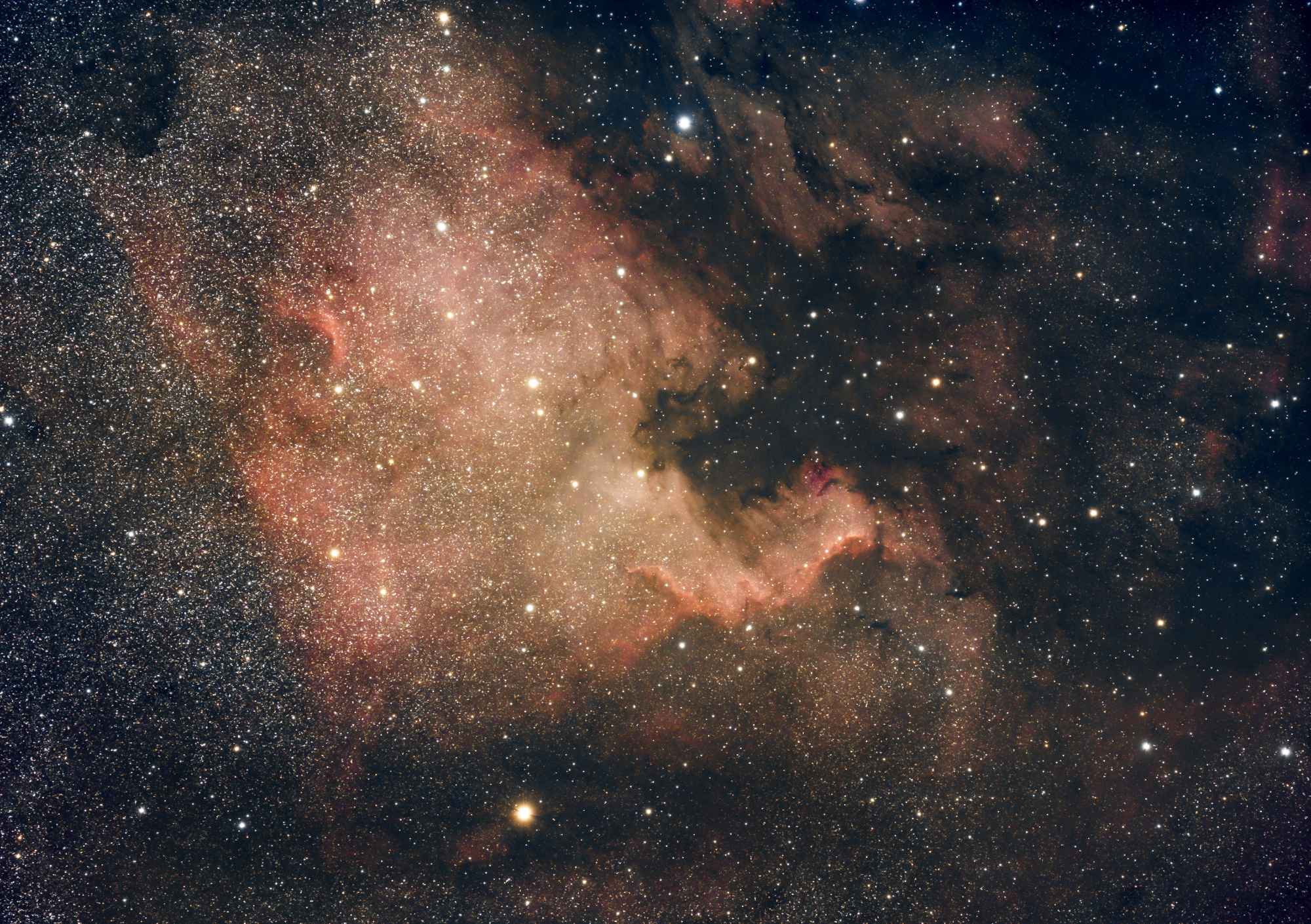 NGC7000_FSQ85_a7s.thumb.jpg.490bdf71b7d9b445ff2726835eeedbe6.jpg