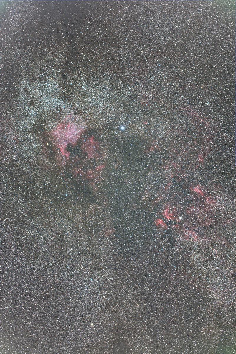 gradientfort2b1200pixelsverticale.jpg