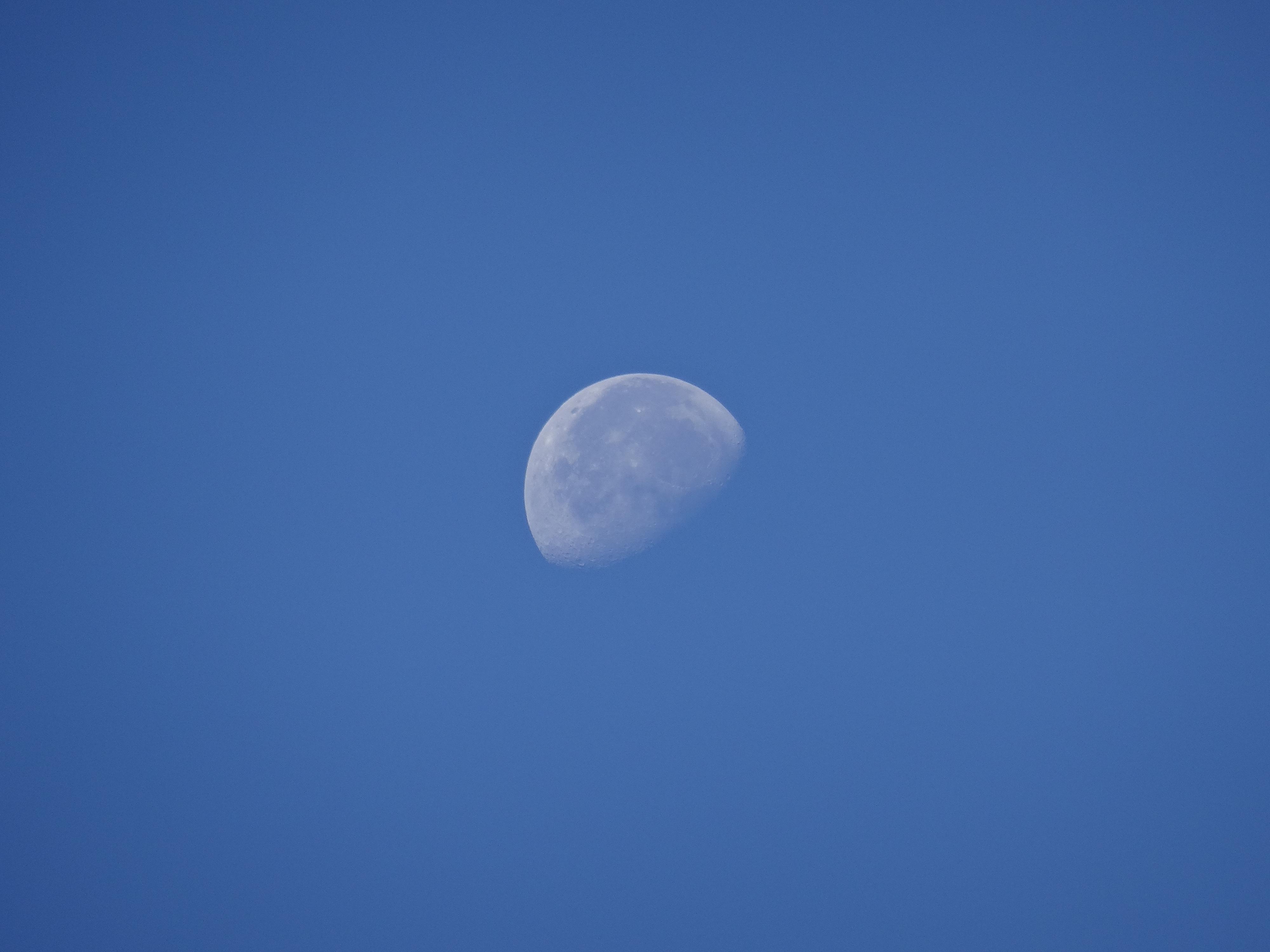 Petite lune alpine du 21/08/19
