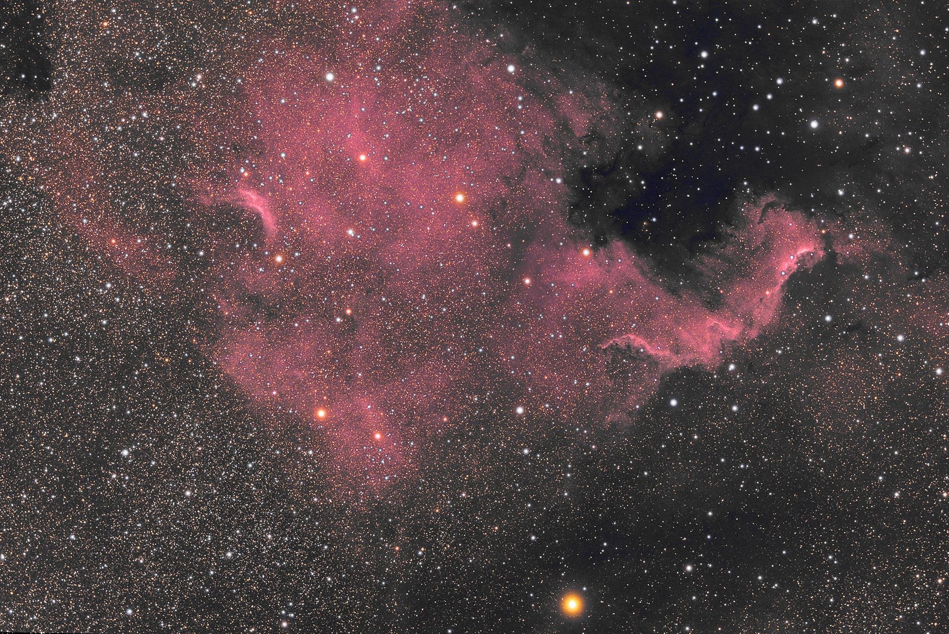 5d7740195d0ac_NGC700006-08-2019PW.jpg.3dca419034d7169b9279a5b007528e74.jpg