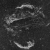 Nébuleuse du Voiles ou les dentelles du Cygne