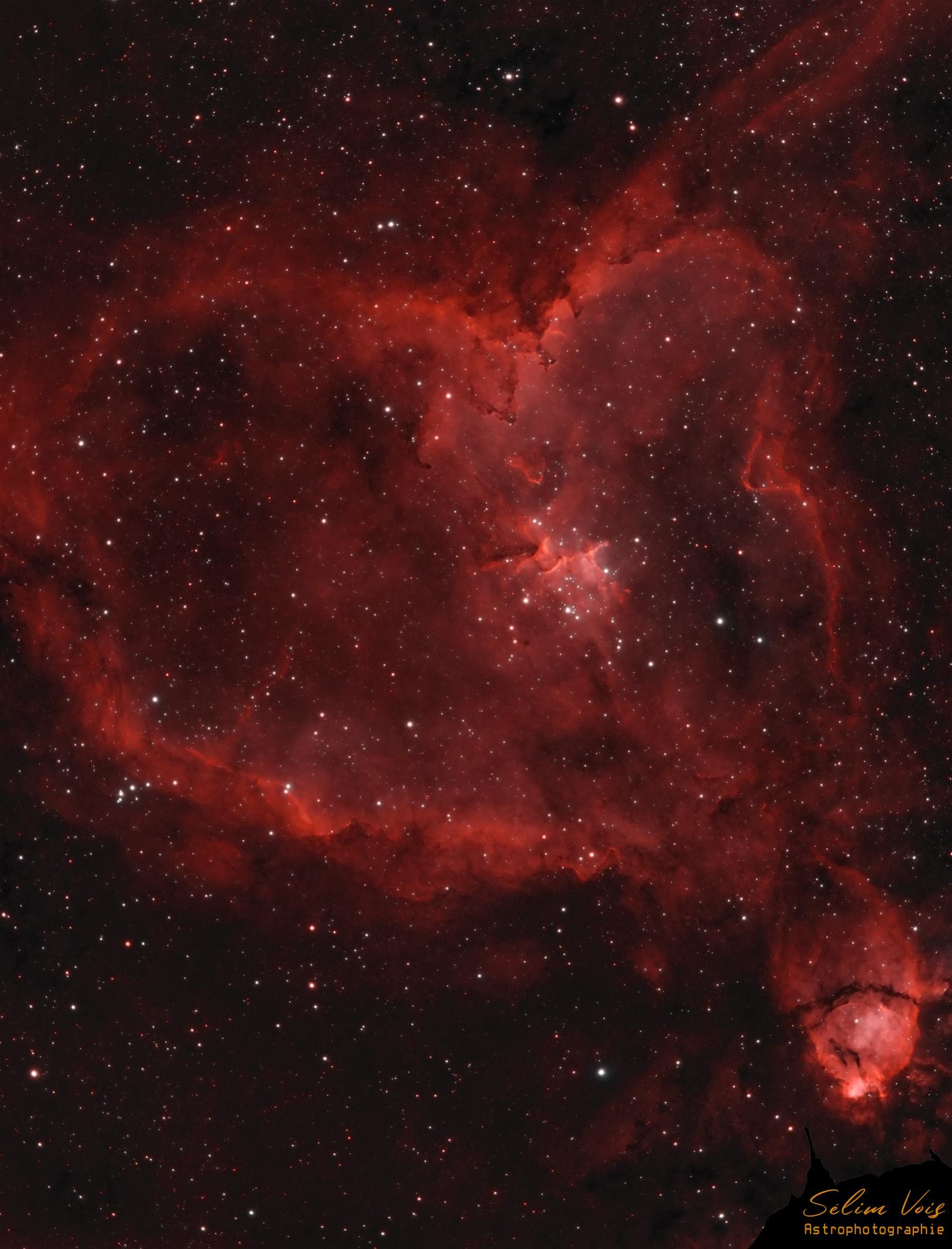 IC1805_HAHOO.jpg