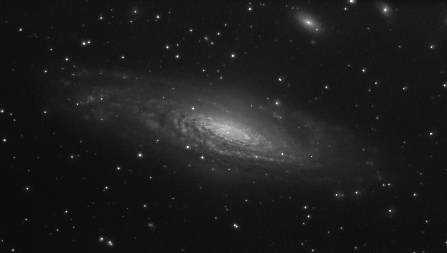 NGC 7331 NB