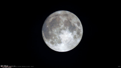 Lune ONE SHOT 12-10-19