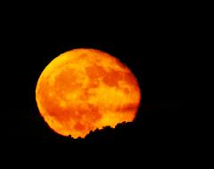 la lune le 15/10/2019 (42893 raw jpeg)