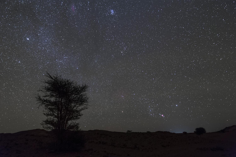 Orion_Serdrar-2.jpg.37e1fd520cb6d648c0a35dd75f2fd239.jpg