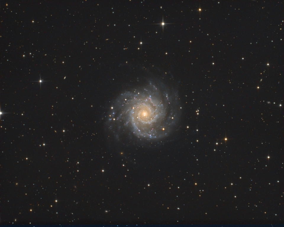 medium.m74LRGB.jpg.c5be43eabd49409ee5f34