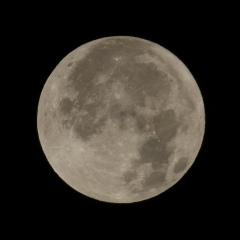 la lune le 12/12/2019 (45328AI1) quasi pleine