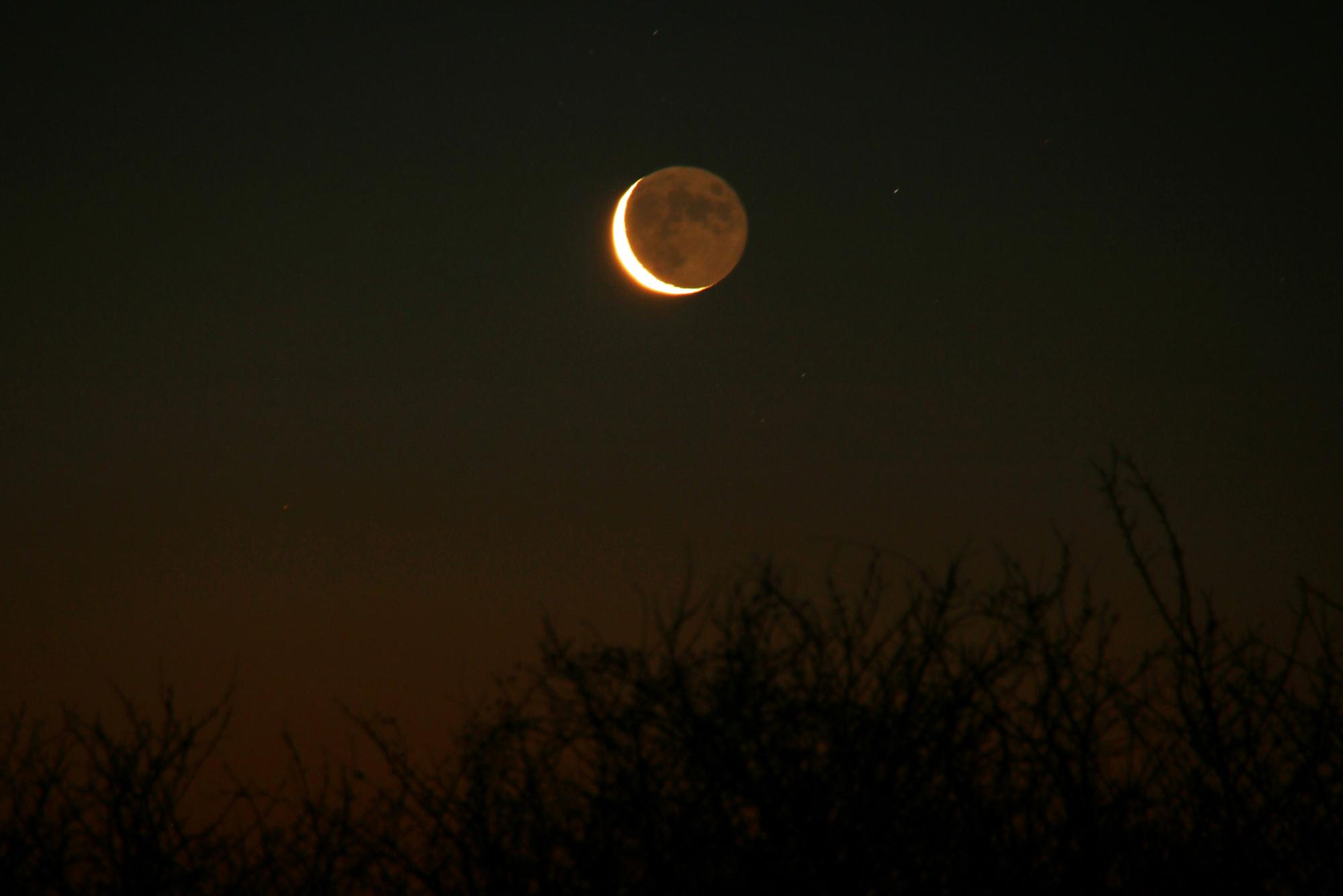 2 Lune cendrée 1146B1N1 send.jpg